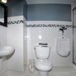 Basement Kids Bathroom Eldersburg 21784